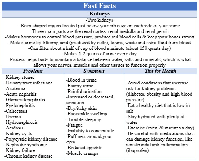 Fast Facts Kidneys