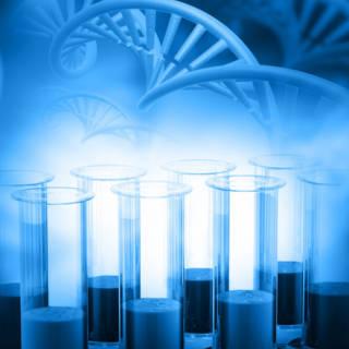0115 Lab Grown Organs TN