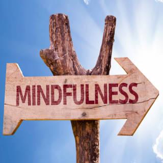 0212 Mindfulness TN