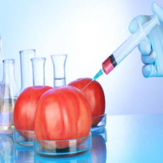 0211 GMO Products TN