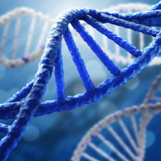 DNA Testing & Privacy