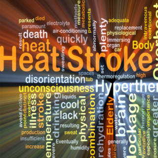 0731   Heat Stroke TN