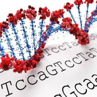 0918 DNA Testing TN