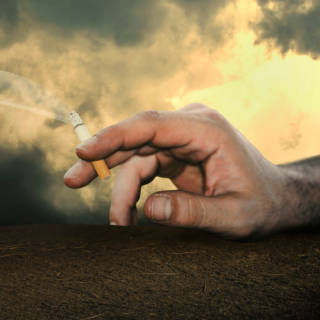 0226 Cigarettes TN