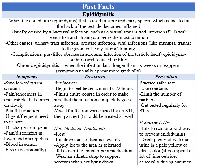 Fast Facts Epididymitis